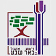 beer-sheva-city-logo