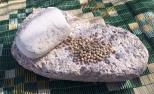 Pulverizing grain seeds