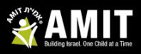 AMIT schools logo