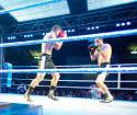 Boxing sports