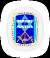 Israel Fencing logo
